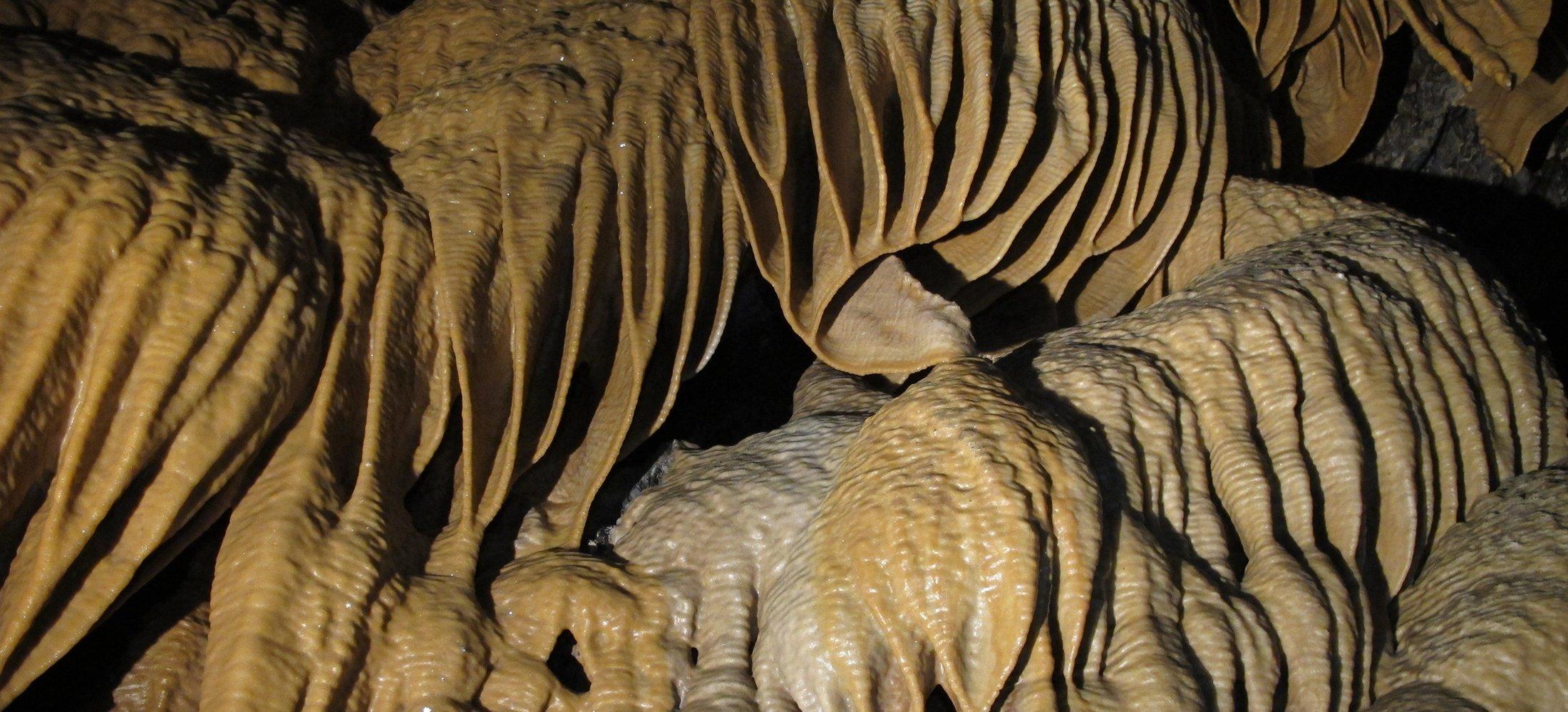 Deb_Hunter_Wild_Cave_Tours_2.jpg